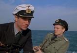 Кадр изо фильма Подводная верейка торрент 007552 план 0