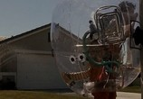 Сцена из фильма Парень из пузыря / Bubble Boy (2001) Парень из пузыря сцена 3