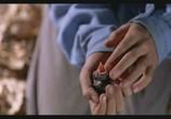 Сцена из фильма Цвет Рая / Rang-e khoda (1999) Цвет Рая сцена 2