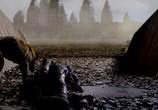Кадр с фильма Философы: Урок выживания торрент 038020 работник 0